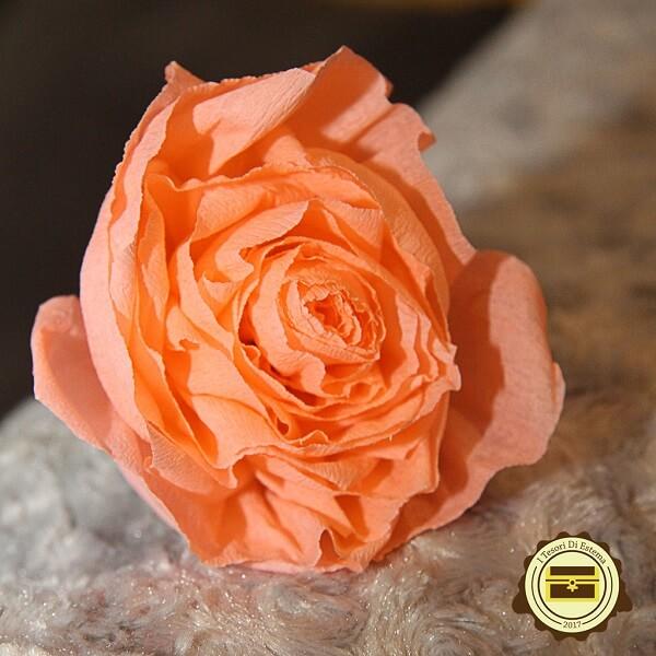 Rosa finta in carta crespa fatta a mano fiori finti realizzati a mano decorazioni artigianali Verona